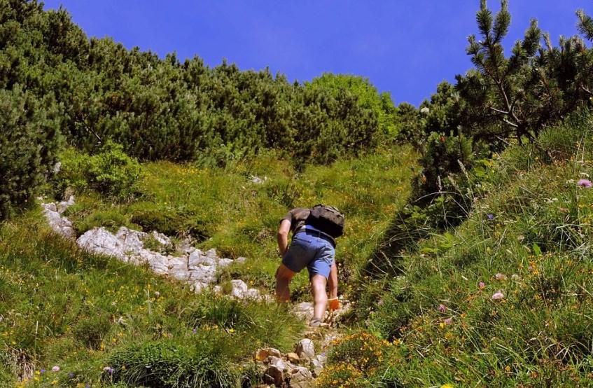 Ходить в гору