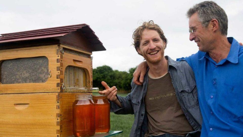 Создатели улья с вытекающим мёдом