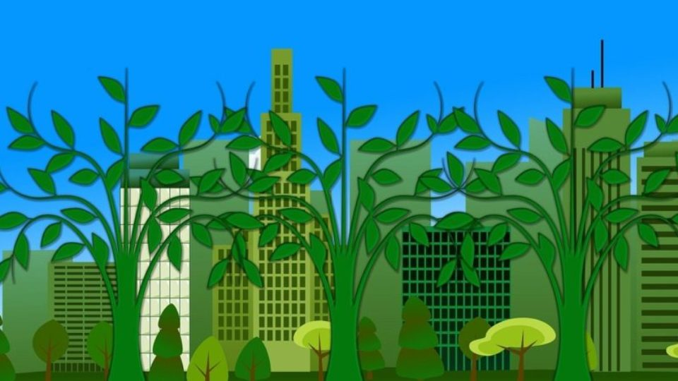 Городская экология