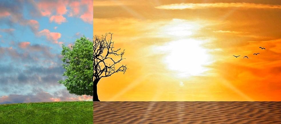 Борьба с изменениями климата