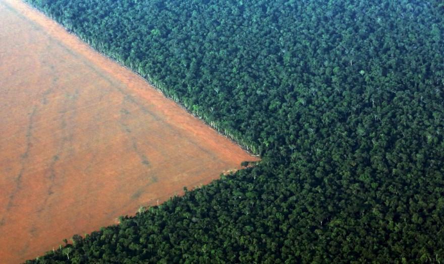 Вырубка лесов Амазонки