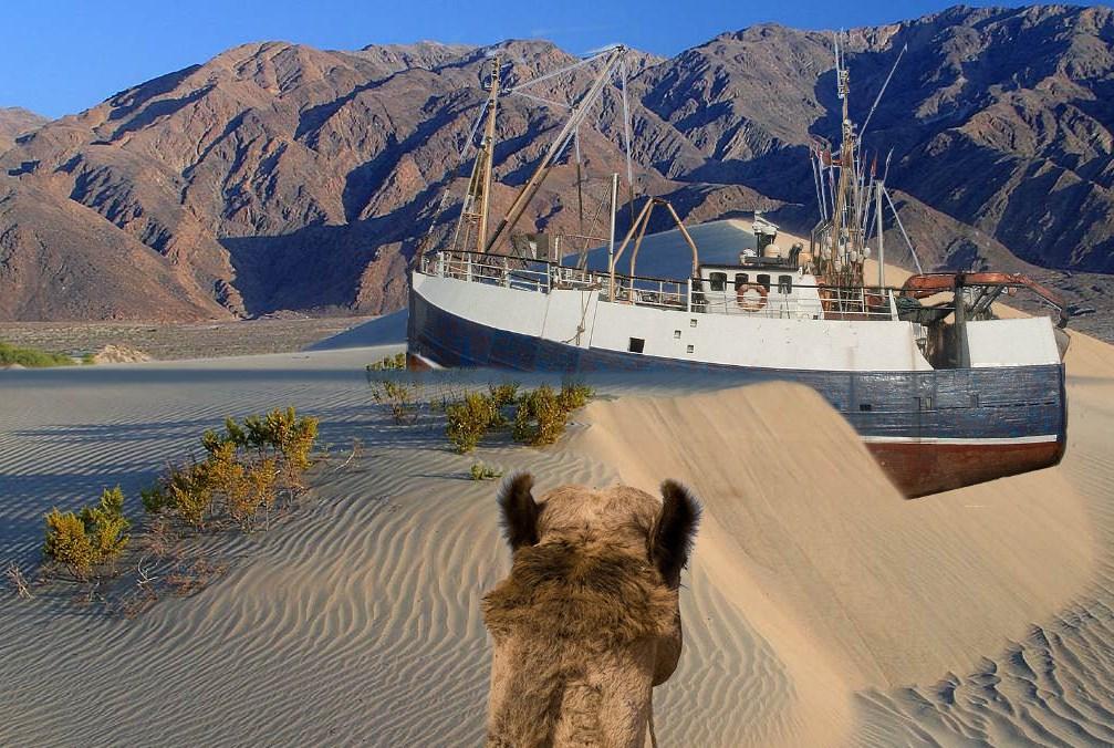 Что случилось с Аральским морем