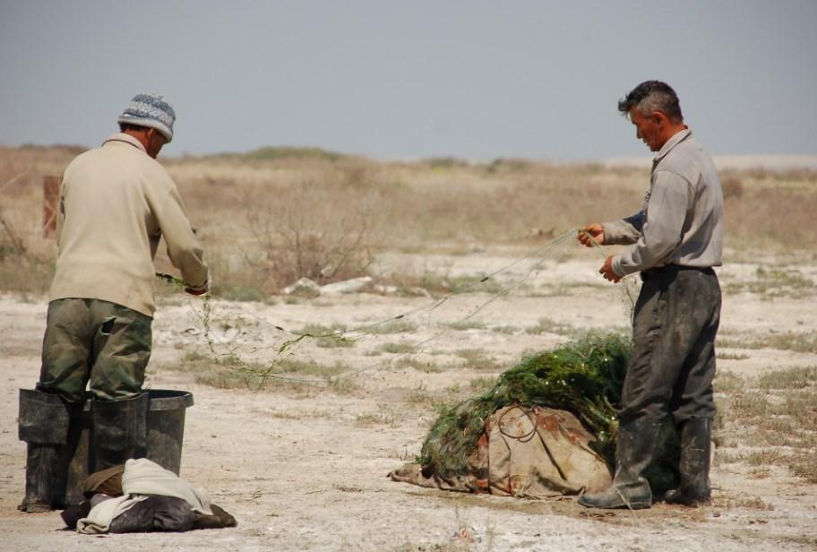 Экологическая катастрофа в Аральском море